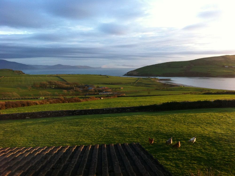 That was seriously the view from my room at this B&B in Dingle, Pax Guest House. Fair play to you iPhone camera (it gets jealous.)