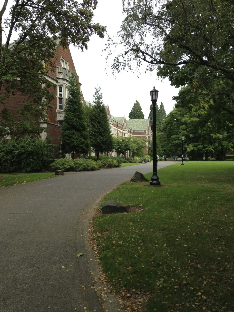 Reed College, looking extra-collegiate.