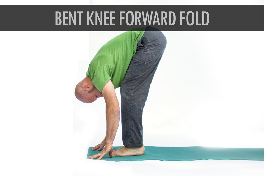 Bent Knee Forward Fold.jpg