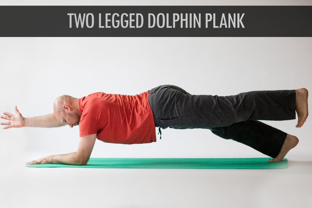 Two Legged Dolphin Plank.jpg