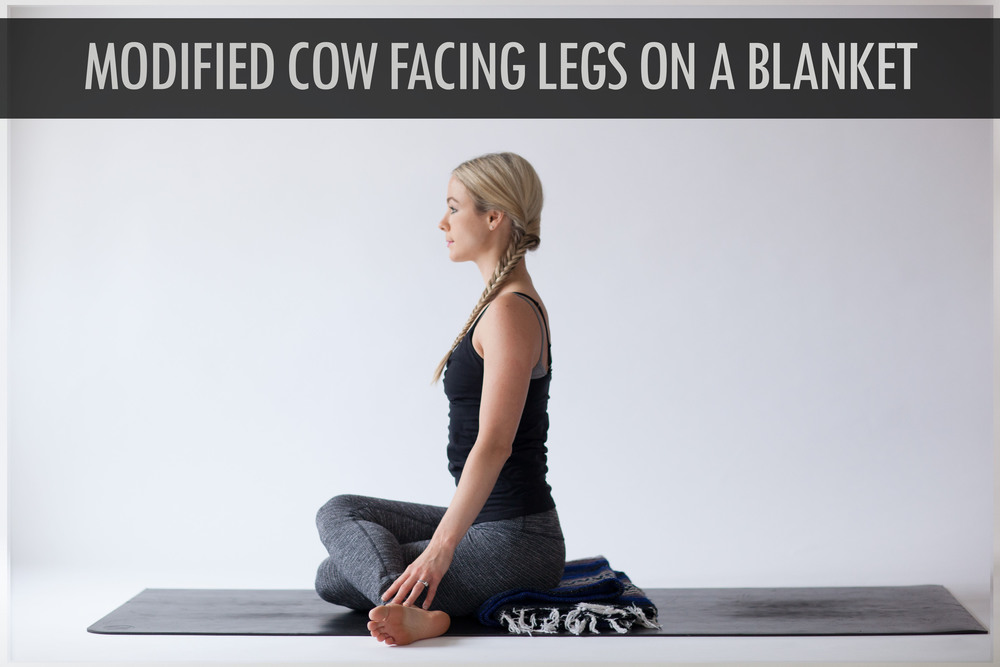 Modified Cow Facing Legs On A Blanket.jpg