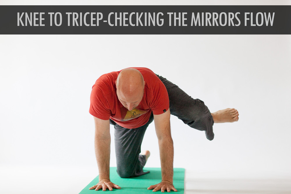 Knee to Tricep ( Checking The Mirrors Flow).jpg