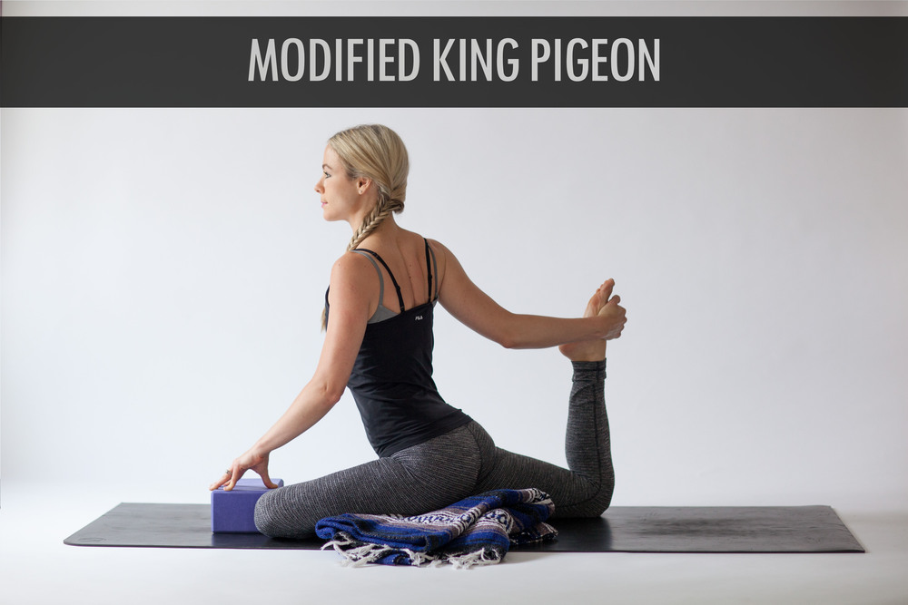 Modified King Pigeon .jpg