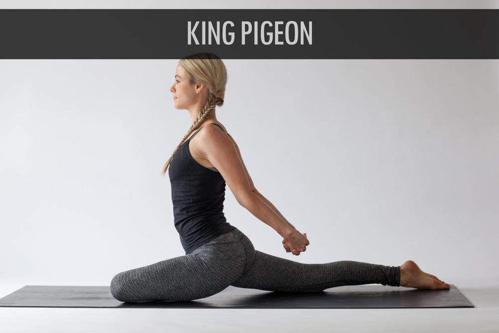 King Pigeon 3.jpg