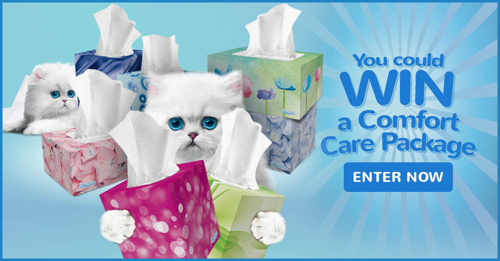 "Scotties ""Kitten Soft Giveaway"" Facebook Ad"
