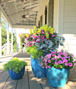 http://www.carmenjohnstongardens.com/garden/celebrate-spring-with-southern-living-magazine/