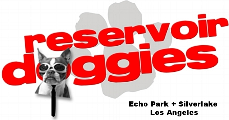 Reservoir Doggies | Silverlake Echo Park Dog Walking