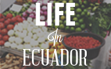 life_in_ecuador_fruit_stand