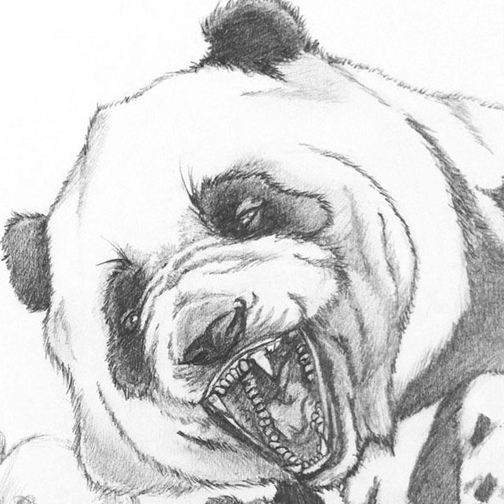 pandaSketch-group-01.jpg