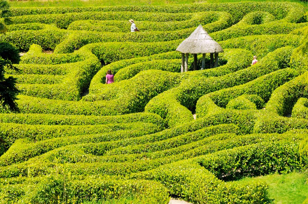 Maze Smaller.jpg