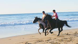 Horseback_california coast.jpg