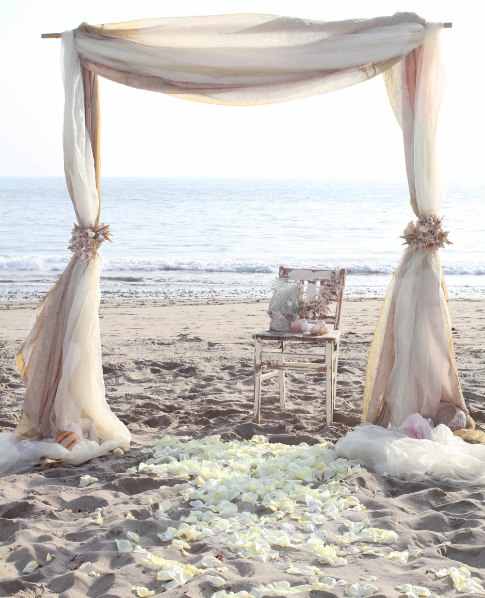 Wedding Seashells is about embracing beach and shore