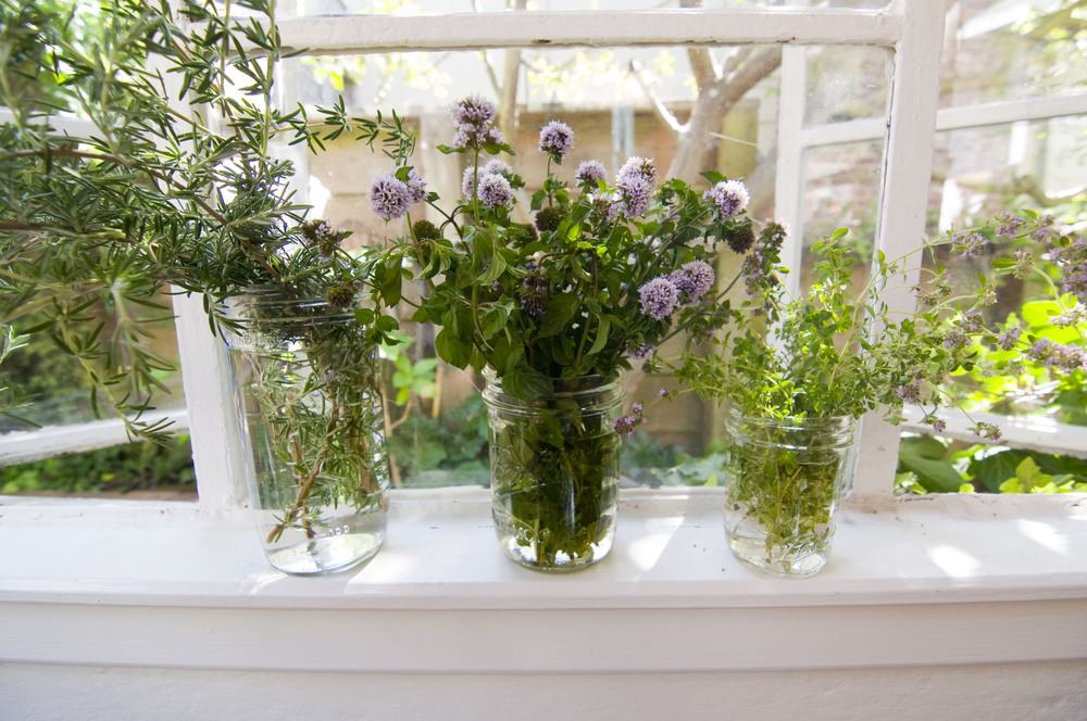 NDL_herbs_jars.jpg