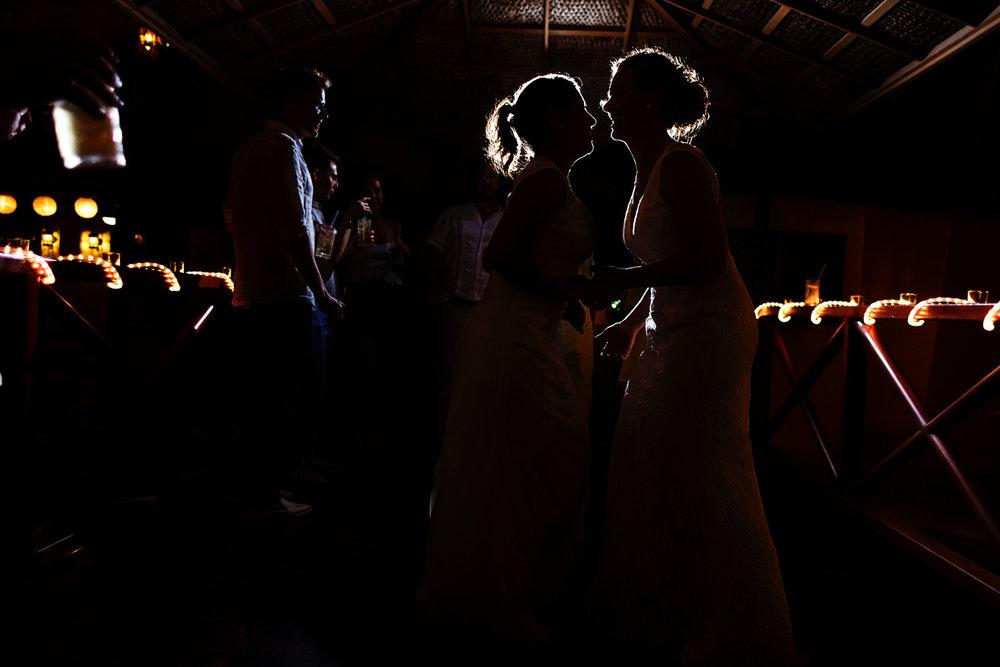 silhouette_lesbian_brides_party
