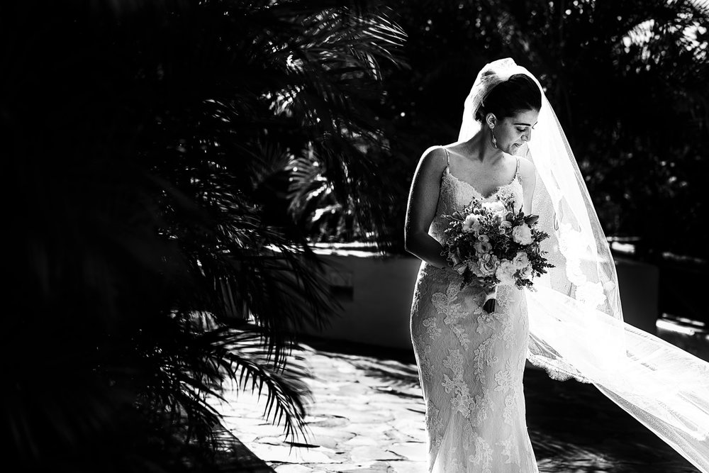 bride-portrait-wedding-dress-veil-palms.jpg