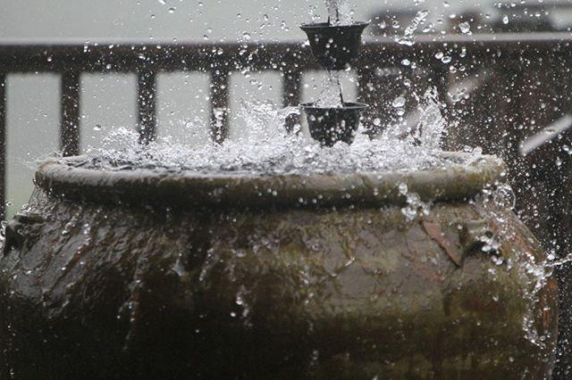 When it rains it pours. 💦☔️🌧⠀⠀⠀⠀⠀⠀⠀⠀⠀ ⠀⠀⠀⠀⠀⠀⠀⠀⠀ #iechoarts #kauai #kauaimedia #productioncompany #entrepreneur⠀⠀⠀⠀⠀⠀⠀⠀⠀ #rain #raindrops💧