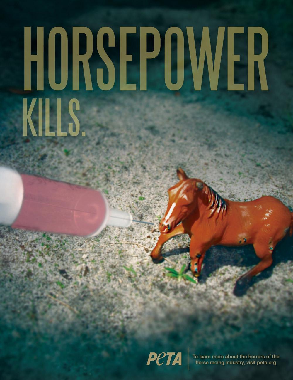 PETA_Horse_3.jpg