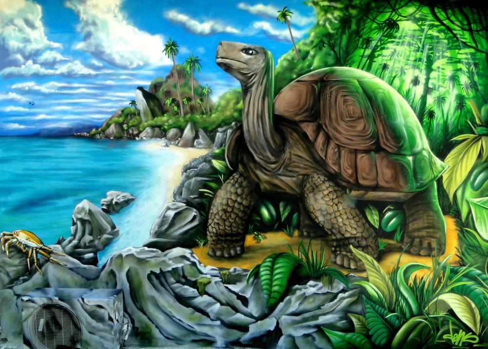 densoner turtle.jpg