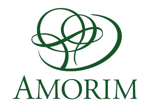 logo_amorim1.jpg
