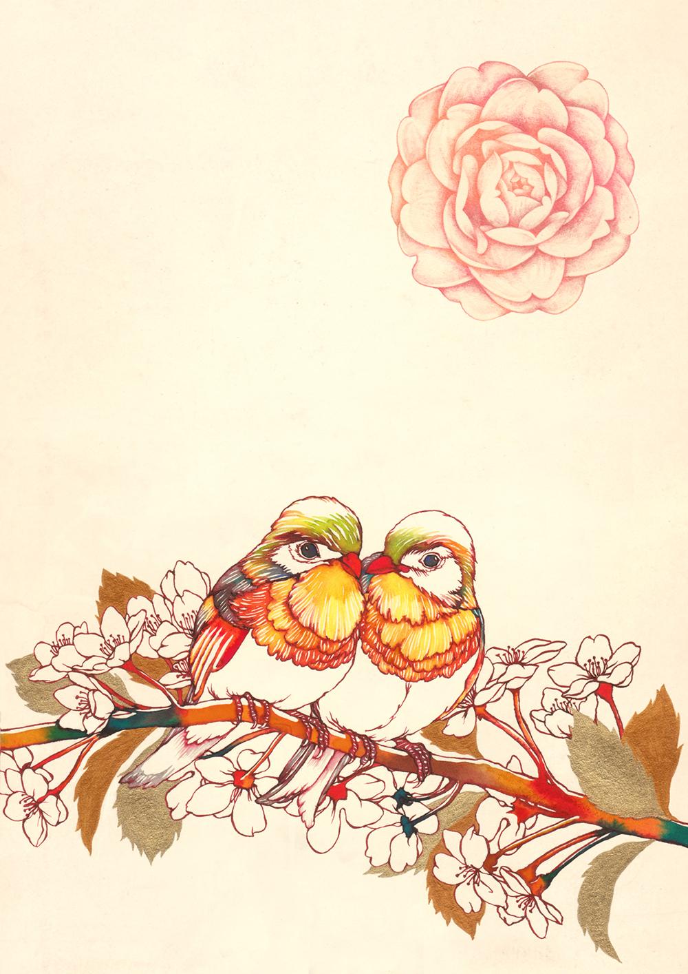 Lovebird.jpg