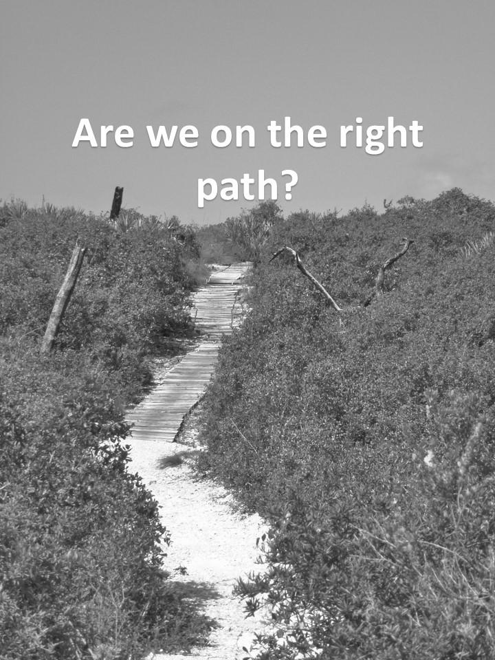 path 3.jpg