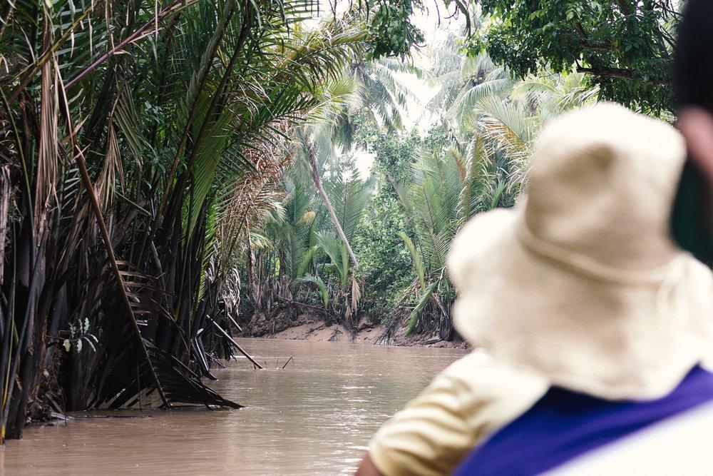 Mekong-elven.