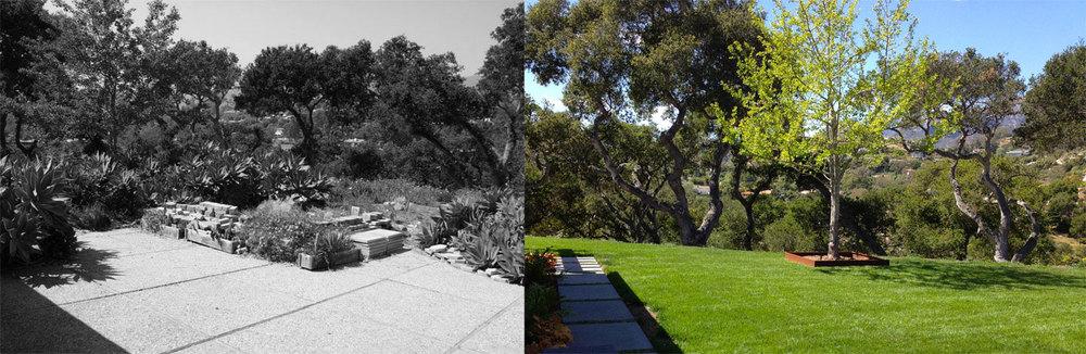 rear_garden-bw.jpg