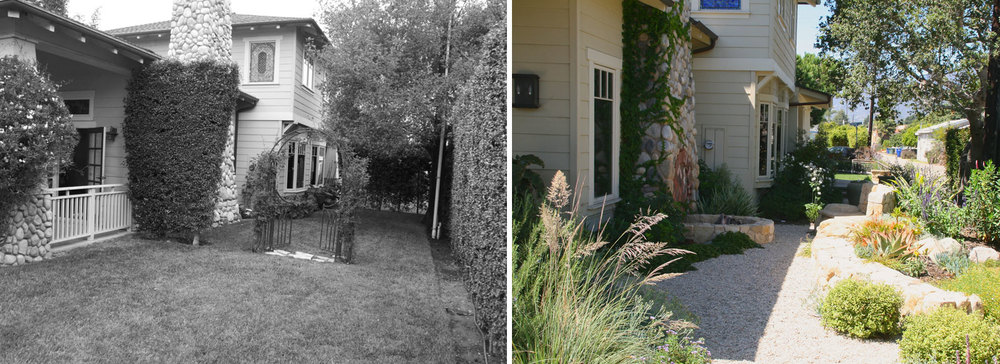 Side garden before and after:  reduced hedge height, removed hedge separating front from side garden, added stone walls for topography and geometry, removal of turf, addition of mediterranean plant palette