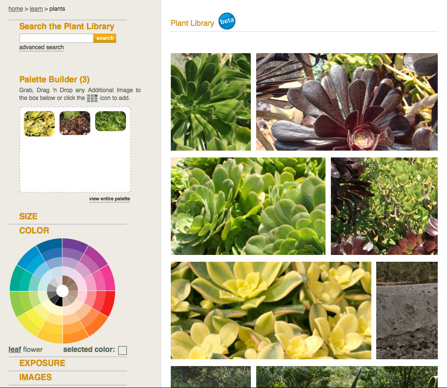 plant library:  thousands of plants, images, and information on what to plant where