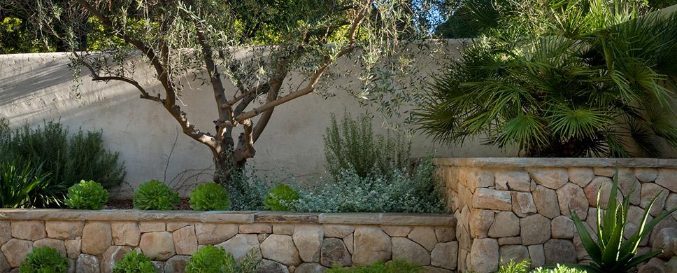 Dry Courtyard garden