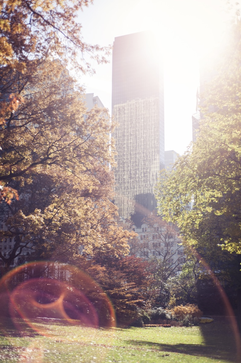NYC13-55.jpg