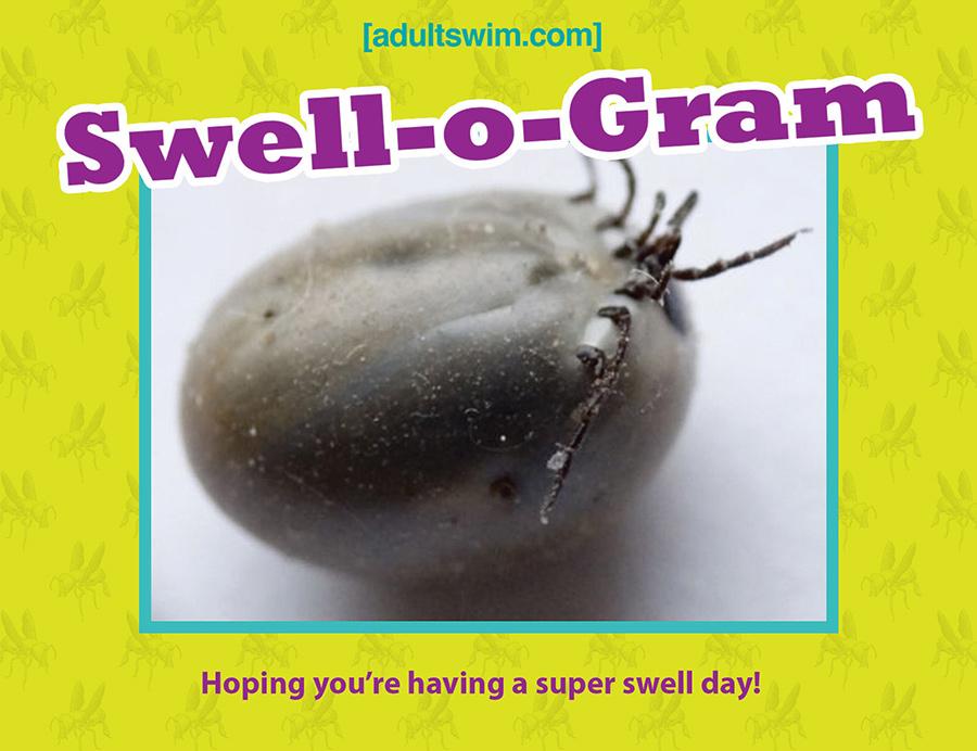 swell-o-gram_sized_900.jpg