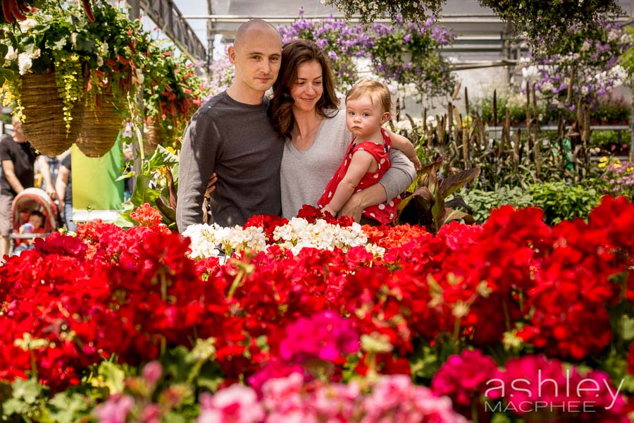 Ashley MacPhee Photography Atwater Market Family Portrait (17 of 17).jpg