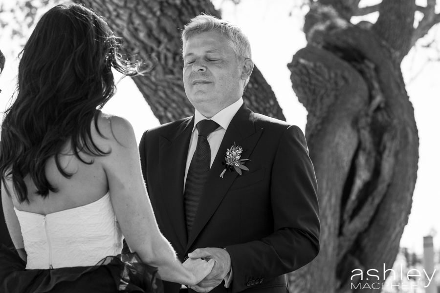 Ashley MacPhee Photography Santa Ynez Sunstone Winery Wedding (75 of 144).jpg