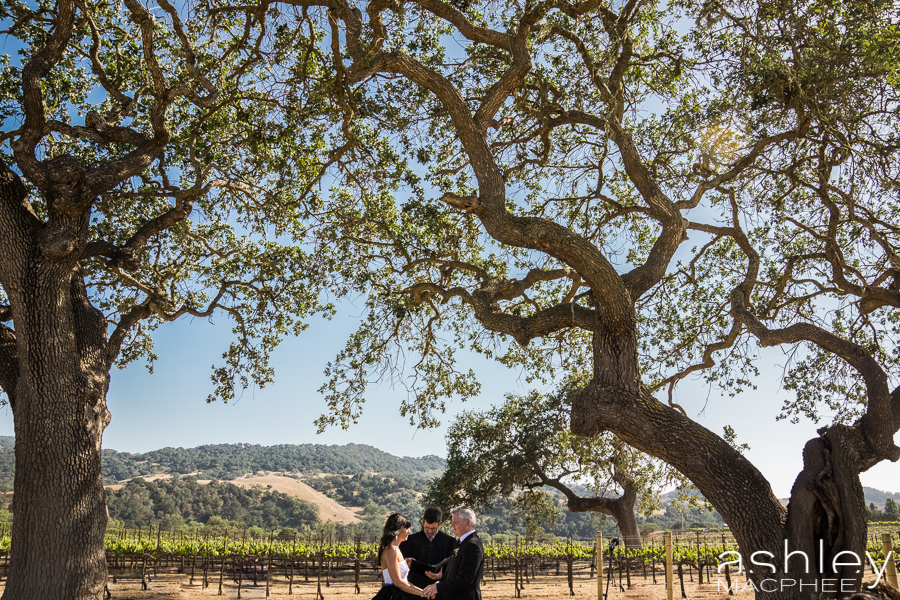 Ashley MacPhee Photography Santa Ynez Sunstone Winery Wedding (74 of 144).jpg
