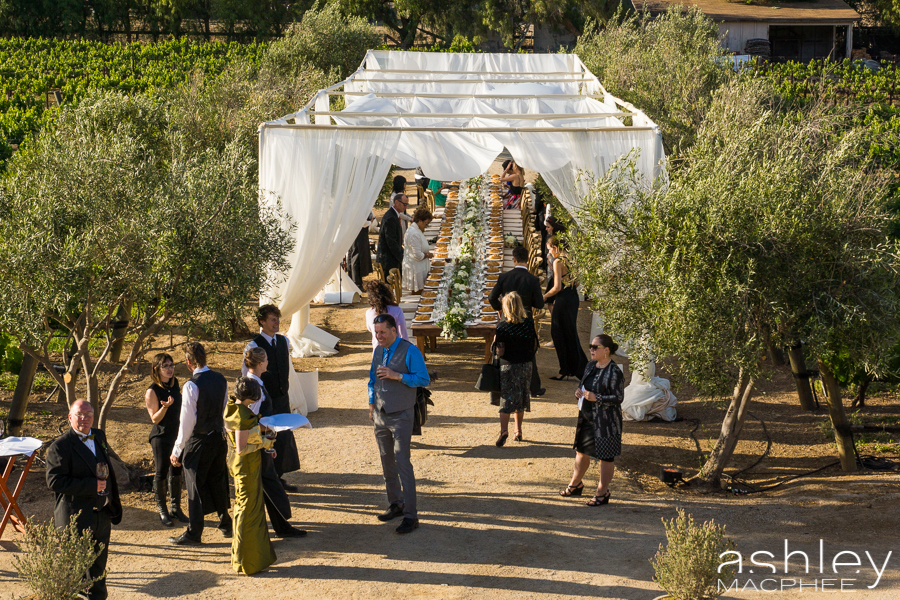 Ashley MacPhee Photography Santa Ynez Sunstone Winery Wedding (86 of 144).jpg