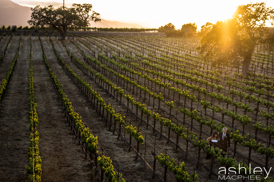Ashley MacPhee Photography Santa Ynez Sunstone Winery Wedding (99 of 144).jpg