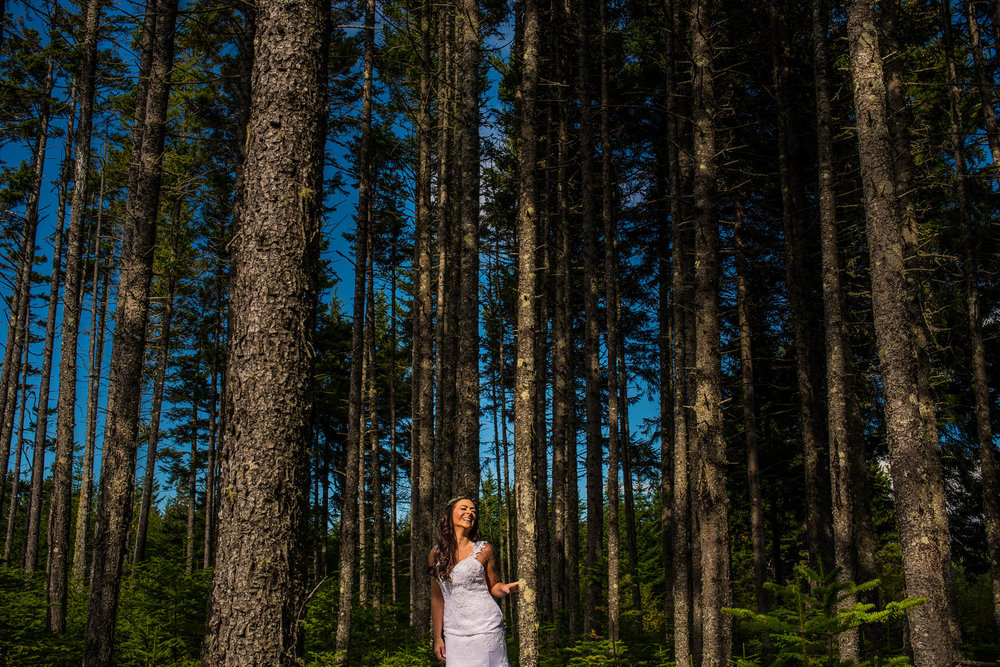 New Brunswick Fundy Park Wedding (23 of 133).jpg