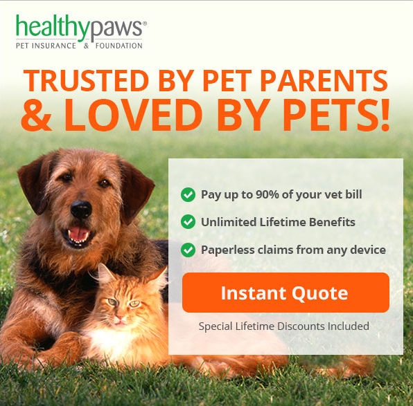 Healthy Paws is the most trusted pet insurance in the biz. And they give back!  They will donate $50 to Badass for each new customer who uses this dedicated link (click the image).