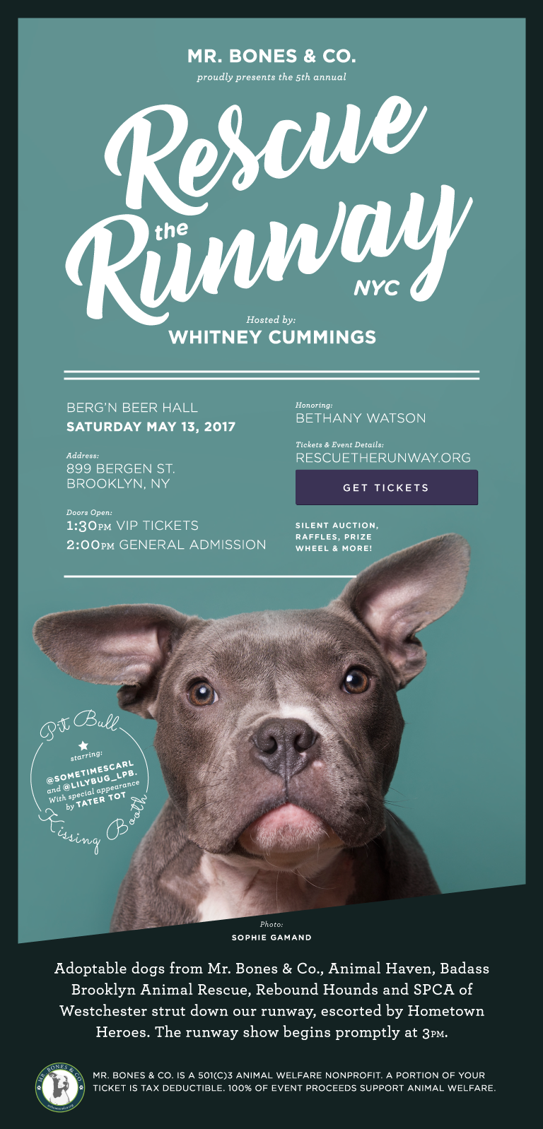 Rescue the Runway — Badass Brooklyn Animal Rescue
