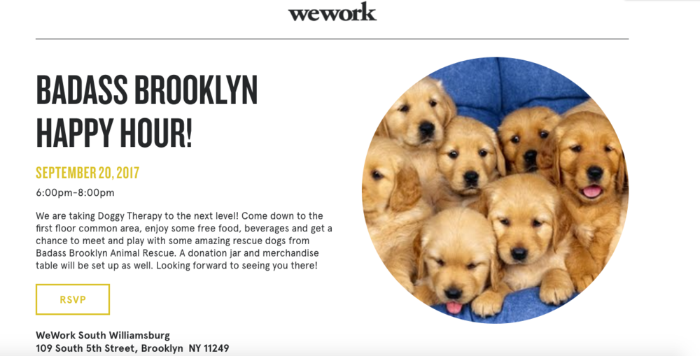 Badass Brooklyn WeWrok.png