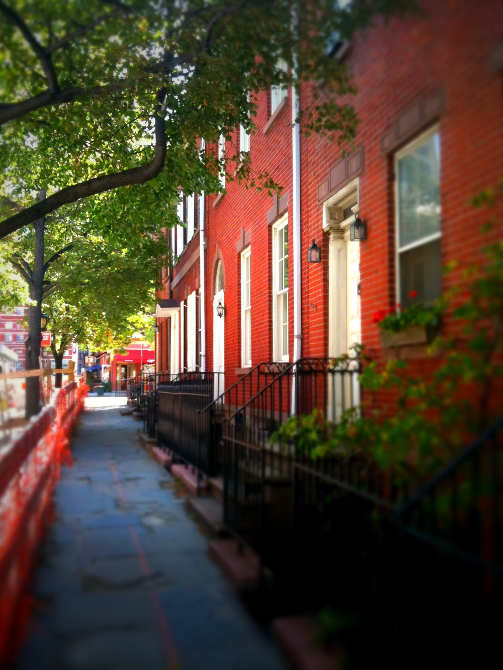 MariaBrito_NYC4.jpg