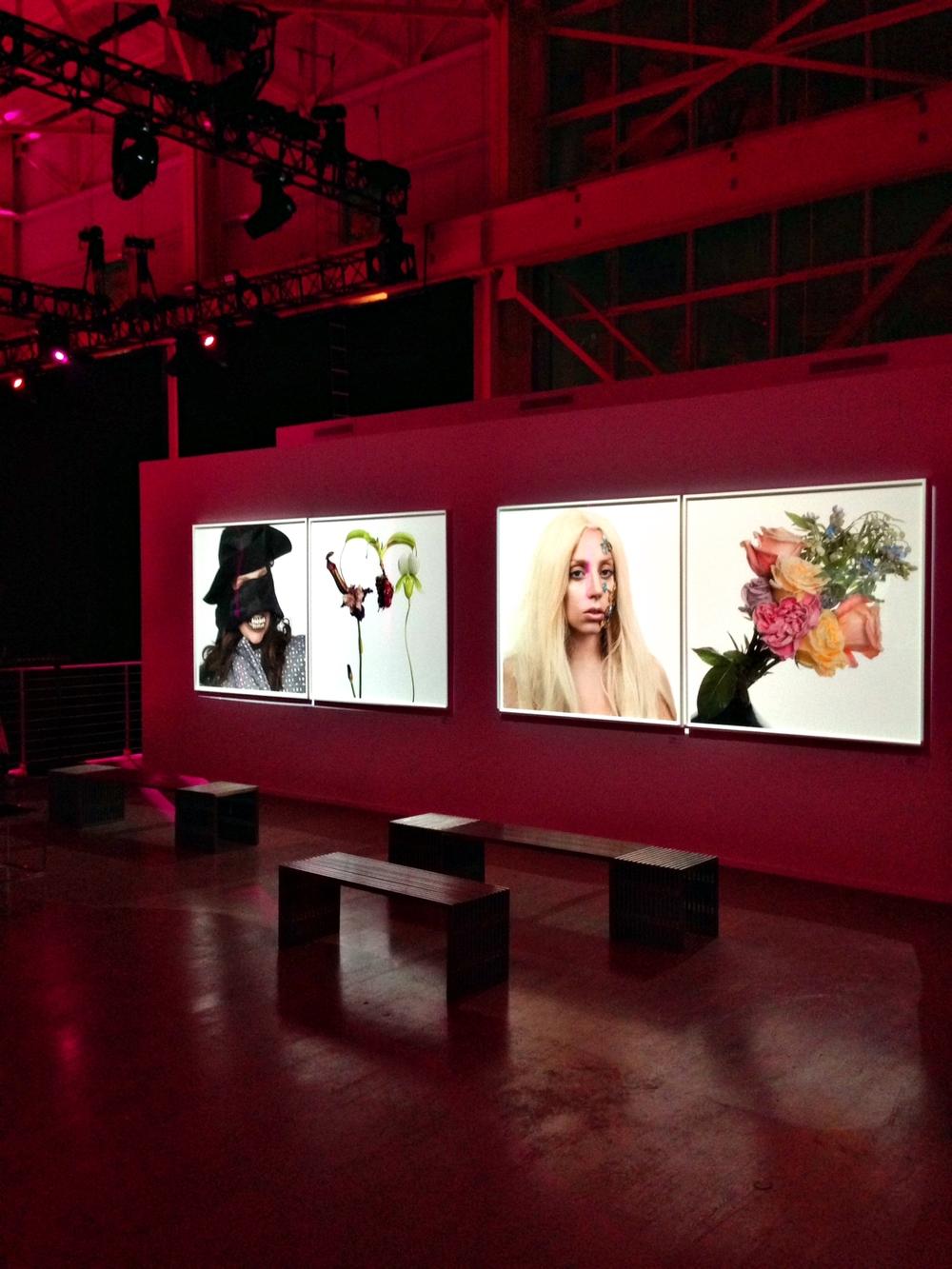 Maria-Brito_Lady-Gaga-Koons-ArtRave-8.jpg
