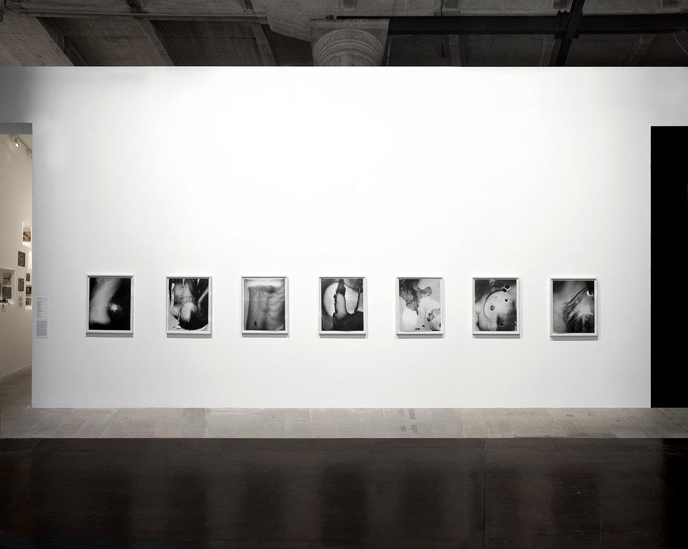 Eileen Quinlan's photographs
