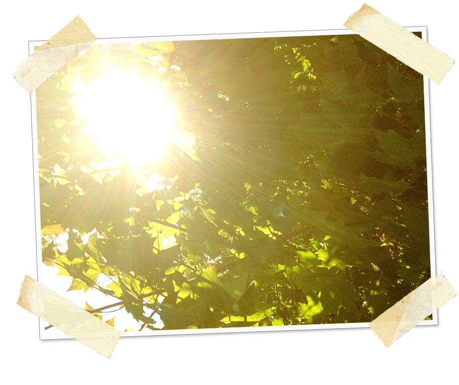 30_days_grateful_day_7_summer_is_still_here.jpg