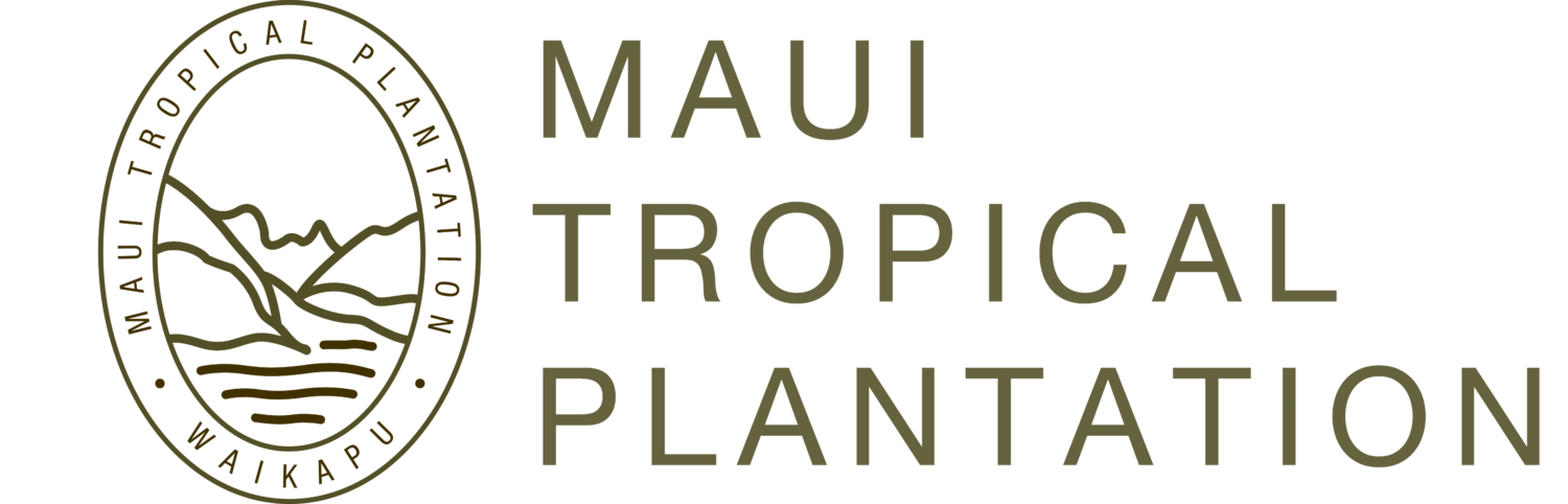 Maui Tropical Plantation | Tour, shop, explore and dine!