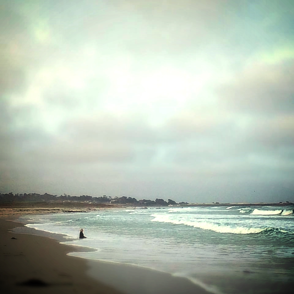 Photo by DeAnn Olsen taken on the shores near Asilomar the morning of Sunday, September 27
