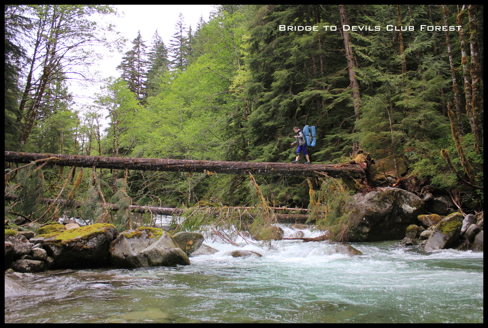 Audrea crossing the log bridge to Morphues.  Later in the summer when water levels go down it is possible to cross on the rocks.  Walking, crawling and not falling are great options for accessing this amazing climbing area.