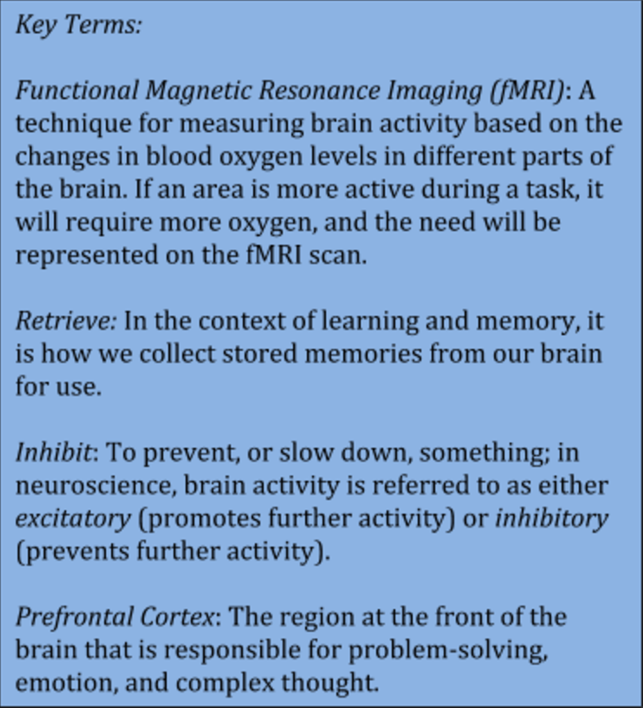 Blog The Think Tank Physics Free Body Force Diagram Poster Zazzle Study Conducted By Maria Wimber And Colleagues In Uk Used A Brain Imaging Technique Known As Functional Magnetic Resonance Fmri To See
