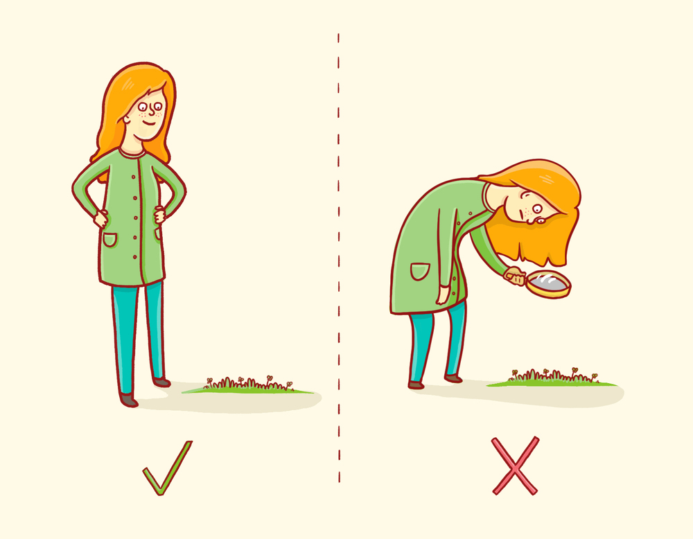 A Guide To Finding a 4 Leaf Clover Just in Time For St. Patrick's Day